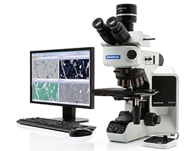 奥林巴斯BX53显微镜